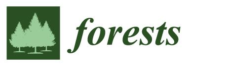 forests-logo